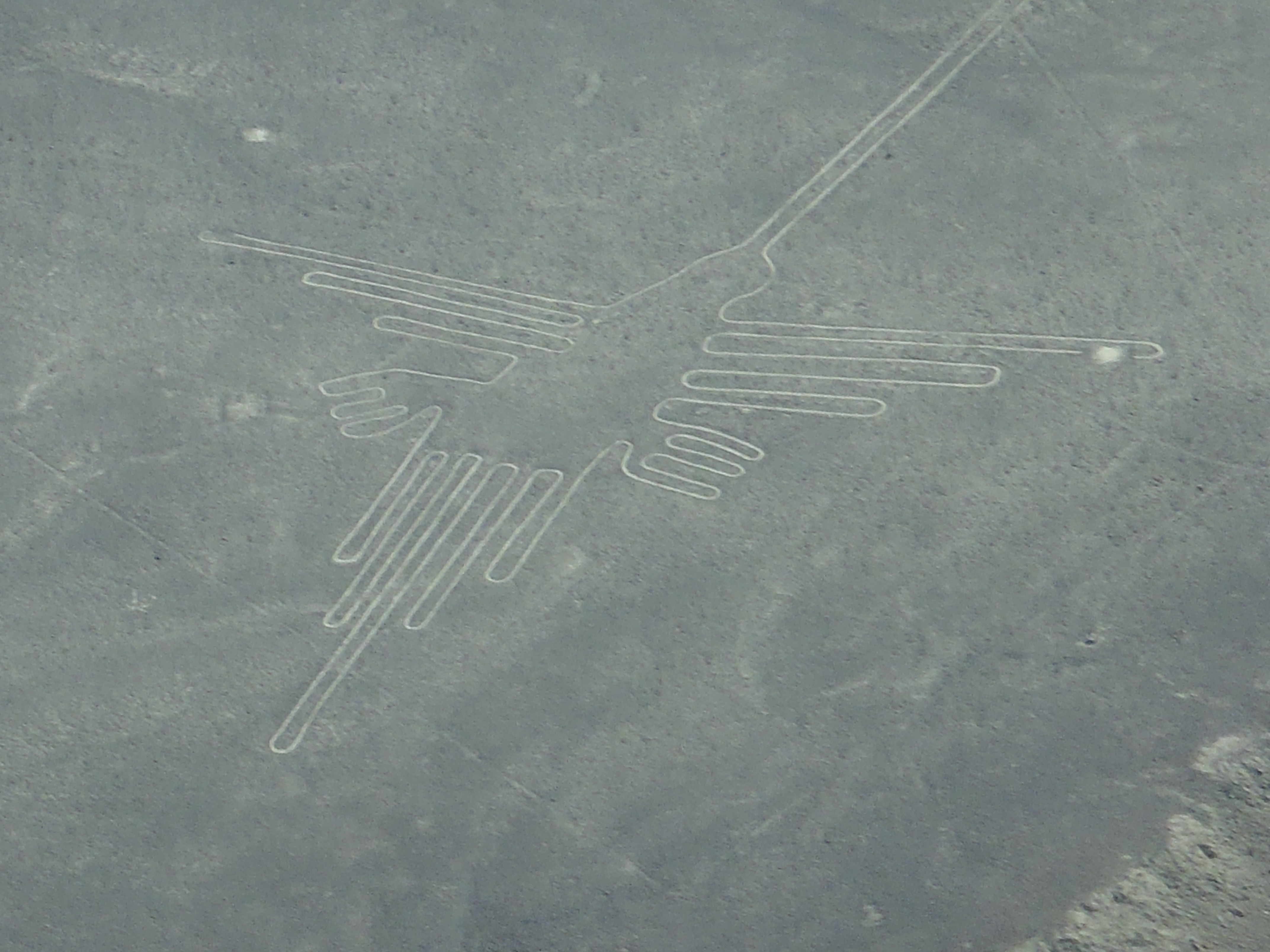 essay on the nazca lines After a quick stay in ica we headed southeast to nazca to see unesco's world  heritage site nazca lines once again, the landscape was.